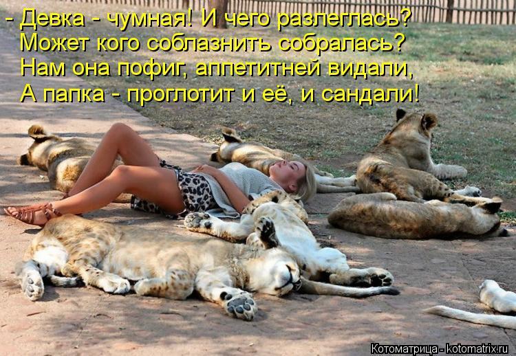 Смотреть русская лезбиянка совратила свою подругу 8 фотография