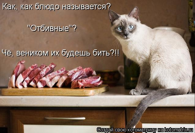 """Котоматрица: Чё, веником их будешь бить?!! Как, как блюдо называется? """"Отбивные""""?"""