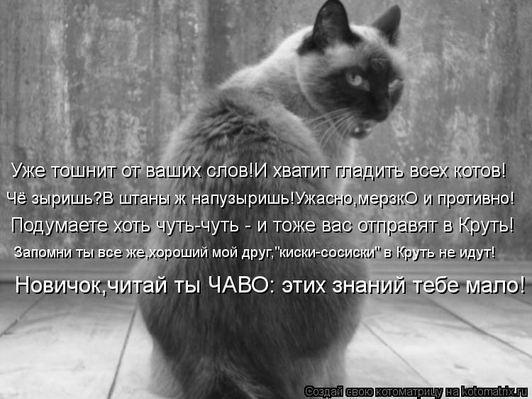 Котоматрица: Уже тошнит от ваших слов!И хватит гладить всех котов! Чё зыришь?В штаны ж напузыришь!Ужасно,мерзкО и противно! Подумаете хоть чуть-чуть - и то