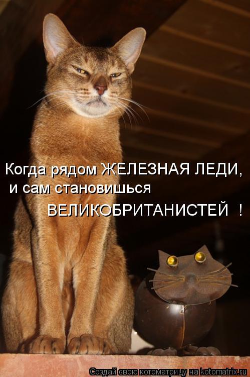 Котоматрица: Когда рядом ЖЕЛЕЗНАЯ ЛЕДИ,  и сам становишься  ВЕЛИКОБРИТАНИСТЕЙ  !