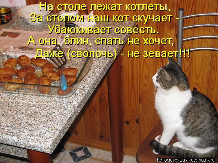 Маленький столик за углом - Том V - Страница 63 Kotomatritsa_CR