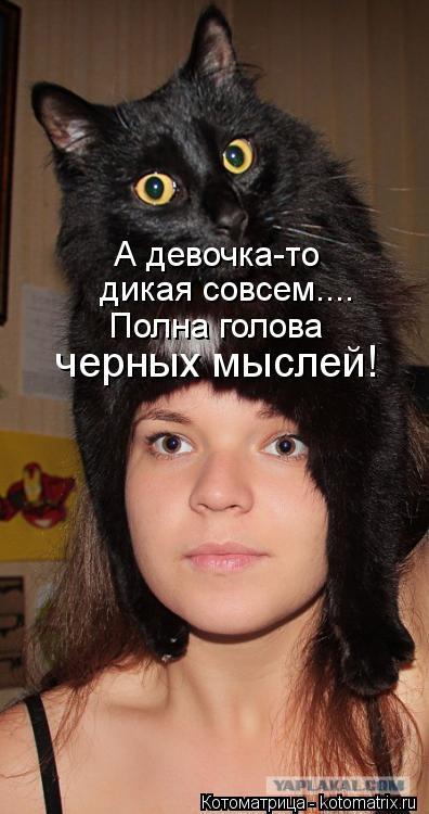 Котоматрица: А девочка-то  дикая совсем.... Полна голова  черных мыслей!