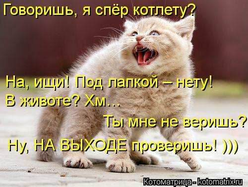Котоматрица: Говоришь, я спёр котлету? На, ищи! Под лапкой – нету! В животе? Хм…   Ты мне не веришь? Ну, НА ВЫХОДЕ проверишь! )))