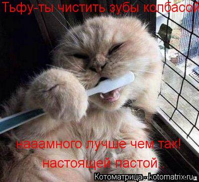 Котоматрица: Тьфу-ты чистить зубы колбасой нааамного лучше чем так! настоящей пастой..