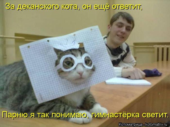Котоматрица: За деканского кота, он ещё ответит, Парню я так понимаю, гимнастёрка светит.