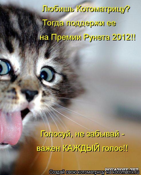 Котоматрица: Любишь Котоматрицу?  Тогда поддержи ее  на Премии Рунета 2012!! Голосуй, не забывай -  важен КАЖДЫЙ голос!!