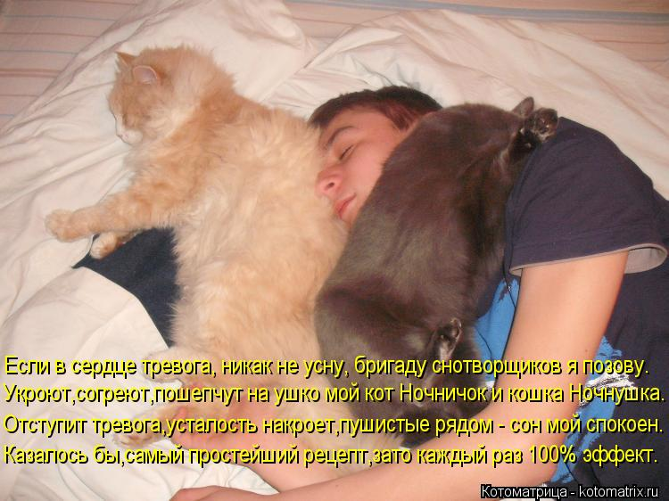 Котоматрица: Если в сердце тревога, никак не усну, бригаду снотворщиков я позову. Укроют,согреют,пошепчут на ушко мой кот Ночничок и кошка Ночнушка. Отст