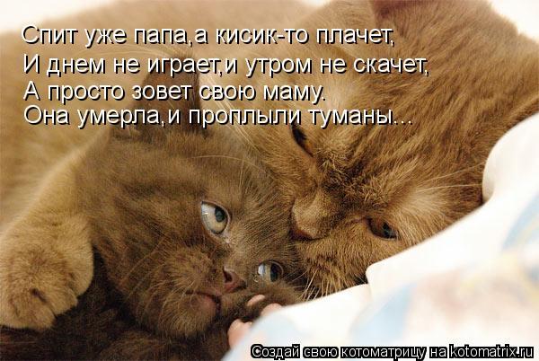 Котоматрица: Спит уже папа,а кисик-то плачет, И днем не играет,и утром не скачет, А просто зовет свою маму. Она умерла,и проплыли туманы...