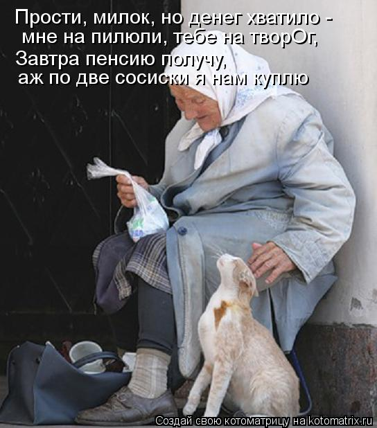 Котоматрица: Прости, милок, но денег хватило - мне на пилюли, тебе на творОг, Завтра пенсию получу,  аж по две сосиски я нам куплю