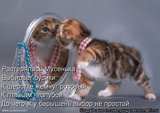 Котоматрица: Растерялась Мусенька  Выбирает бусики: К шерстке жемчуг розовый, К глазкам - голубой До чего ж у барышень выбор не простой.