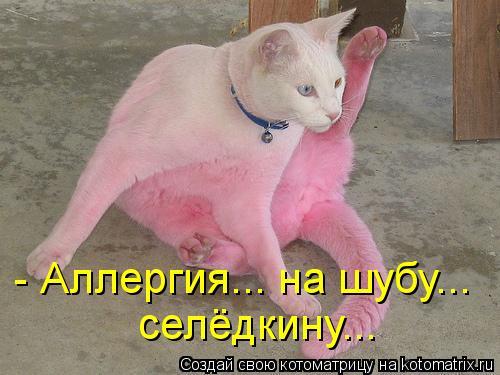 Котоматрица: - Аллергия... на шубу... селёдкину...