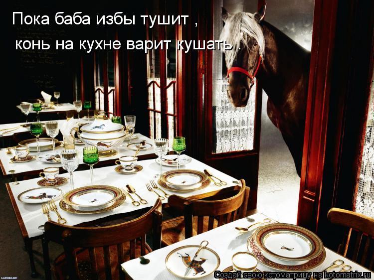 Котоматрица: Пока баба избы тушит ,   конь на кухне варит кушать .