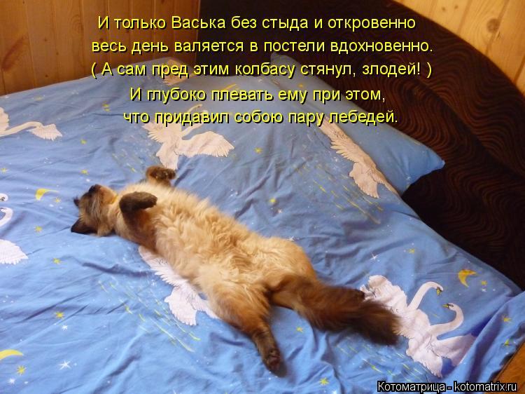 Котоматрица: И только Васька без стыда и откровенно весь день валяется в постели вдохновенно. ( А сам пред этим колбасу стянул, злодей! ) И глубоко плевать