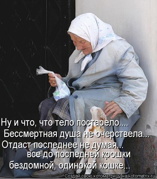 Котоматрица: Ну и что, что тело постарело....  Бессмертная душа не очерствела... Отдаст последнее не думая...  все до последней крошки  бездомной, одинокой ко