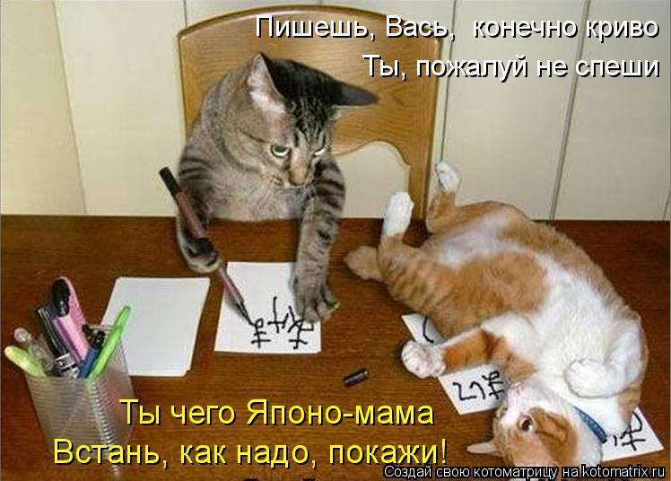 Котоматрица: Пишешь, Вась,  конечно криво Ты, пожалуй не спеши Ты чего Японо-мама Встань, как надо, покажи!