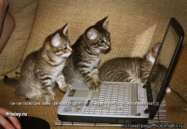 Котоматрица: так-так! посмотрим, какие там новости про Аллу?,))) неужели опять с Филиппом замутила?,)))