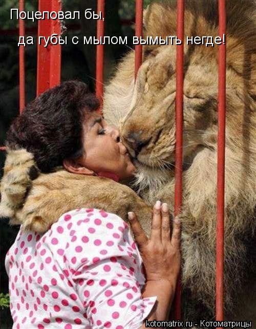 Котоматрица: Поцеловал бы,  да губы с мылом вымыть негде!