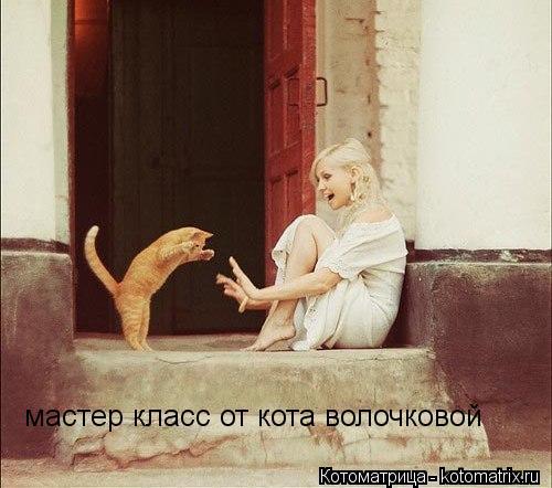 Котоматрица: мастер класс от кота волочковой