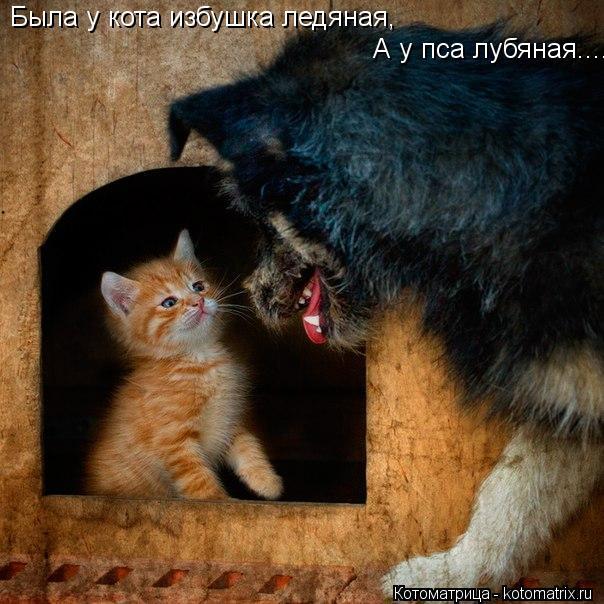 Котоматрица: Была у кота избушка ледяная, А у пса лубяная....