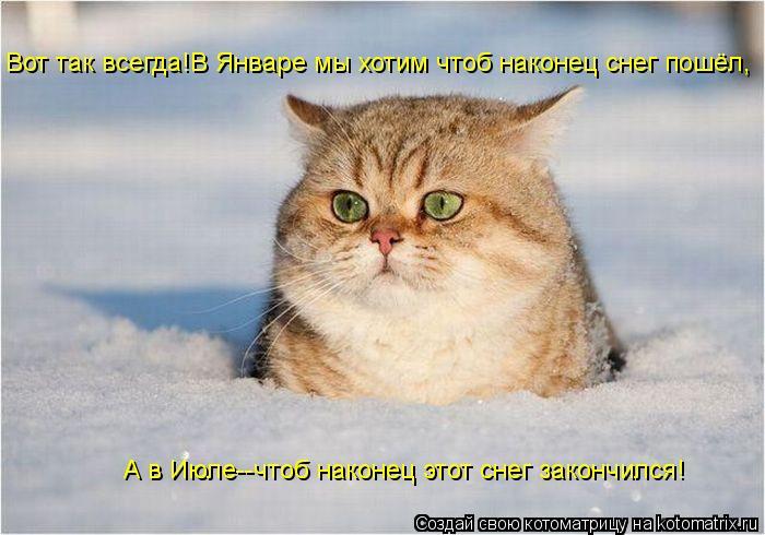 Котоматрица: Вот так всегда!В Январе мы хотим чтоб наконец снег пошёл, А в Июле--чтоб наконец этот снег закончился!