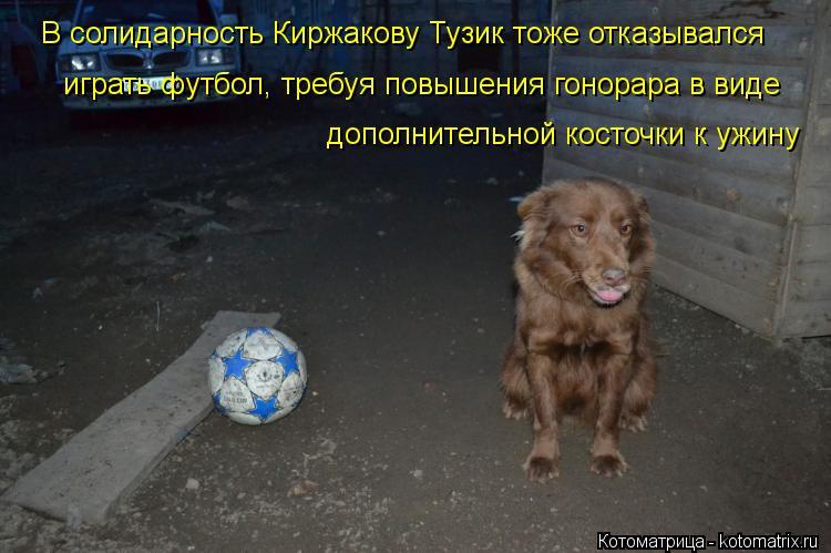 Котоматрица: В солидарность Киржакову Тузик тоже отказывался  играть футбол, требуя повышения гонорара в виде  дополнительной косточки к ужину