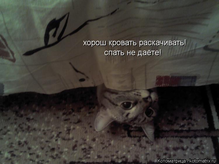 Котоматрица: хорош кровать раскачивать! спать не даёте!