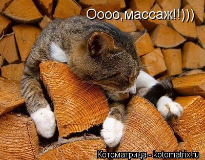 Котоматрица: Оооо,массаж!!)))