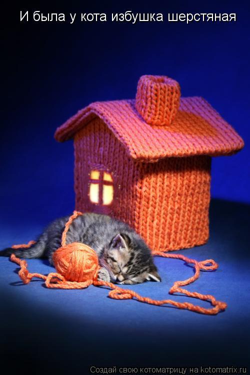 Котоматрица: И была у кота избушка шерстяная