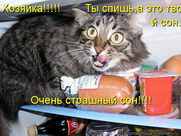 Котоматрица: Хозяйка!!!!!        Ты спишь,а это твой сон. й сон. Очень страшный сон!!!!