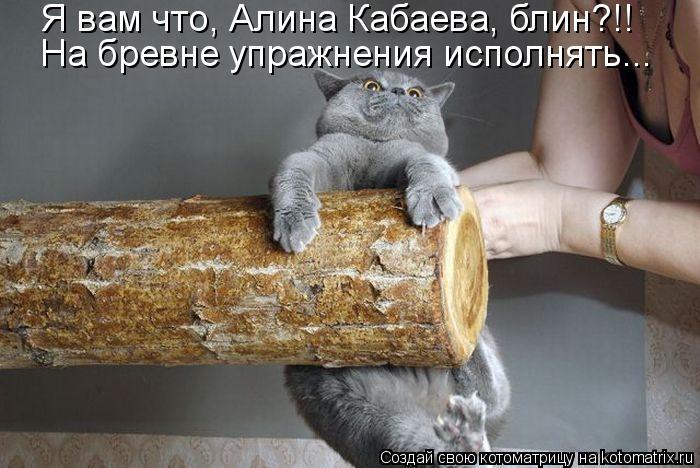 Котоматрица: Я вам что, Алина Кабаева, блин?!!  На бревне упражнения исполнять...
