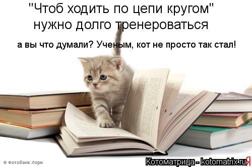 """Котоматрица: """"Чтоб ходить по цепи кругом"""" нужно долго тренероваться а вы что думали? Ученым, кот не просто так стал!"""