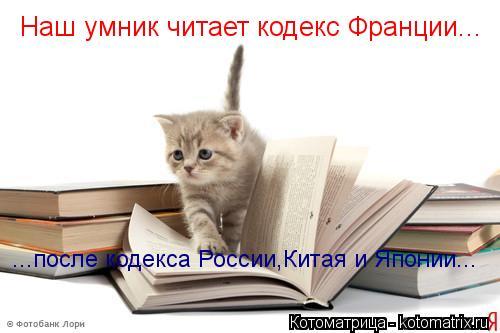 Котоматрица: Наш умник читает кодекс Франции... ...после кодекса России,Китая и Японии...