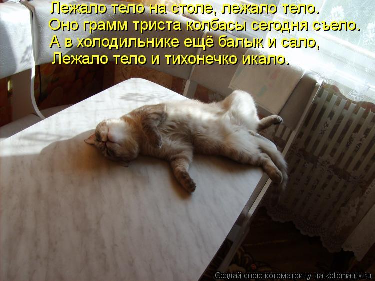 Котоматрица: Лежало тело на столе, лежало тело.  Оно грамм триста колбасы сегодня съело.  А в холодильнике ещё балык и сало,  Лежало тело и тихонечко икало.