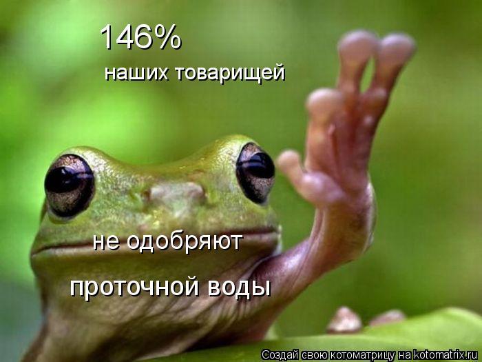 Котоматрица: не одобряют наших товарищей 146% проточной воды