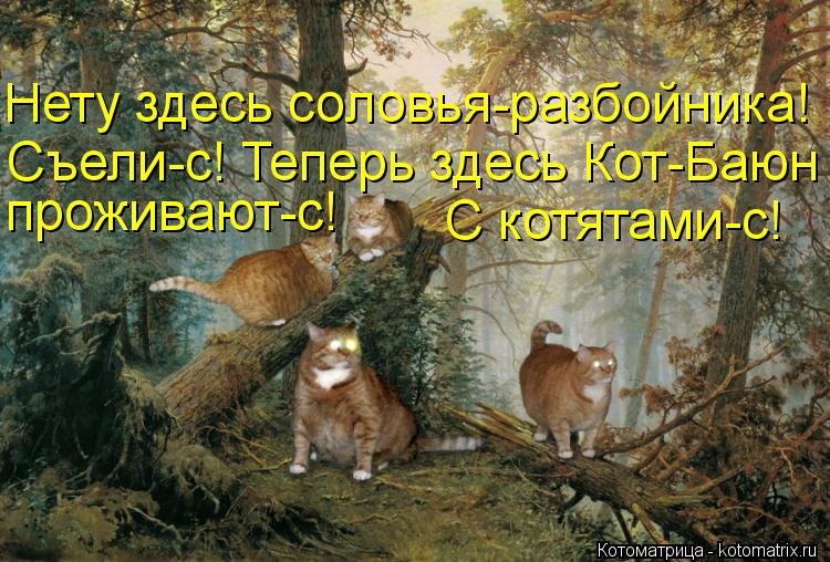 Котоматрица: Нету здесь соловья-разбойника!  Съели-с! Теперь здесь Кот-Баюн проживают-с! С котятами-с!