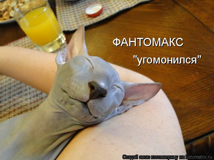 """Котоматрица: ФАНТОМАКС """"угомонился"""""""