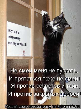 Котоматрица: Я против секретов и тайн, И против закрытых дверей! Не смей меня не пускать, И прятаться тоже не смей!