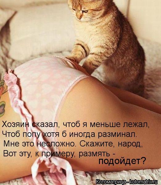 http://kotomatrix.ru/images/lolz/2012/11/12/kotomatritsa_Ck.jpg