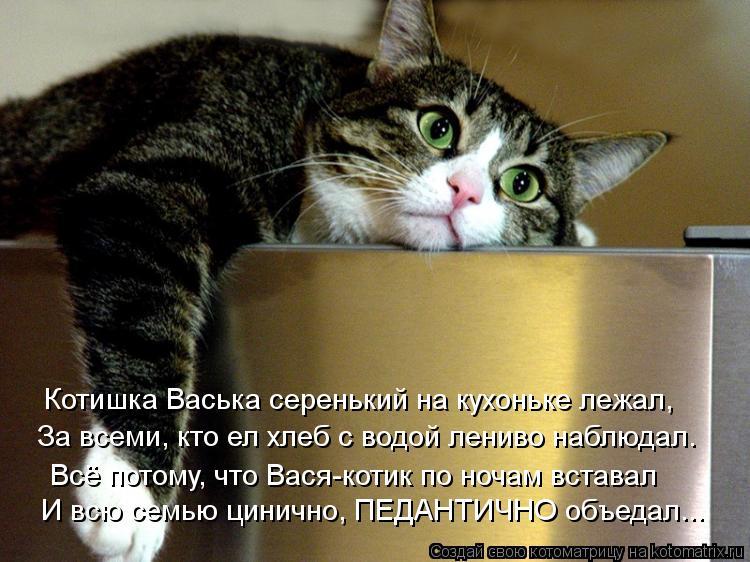 Котоматрица: И всю семью цинично, ПЕДАНТИЧНО объедал... За всеми, кто ел хлеб с водой лениво наблюдал. Котишка Васька серенький на кухоньке лежал, Всё пото