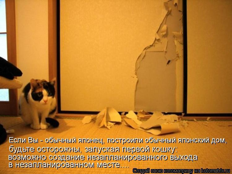 Котоматрица: Если Вы - обычный японец, построили обычный японский дом, будьте осторожны, запуская первой кошку: возможно создание незапланированного вы
