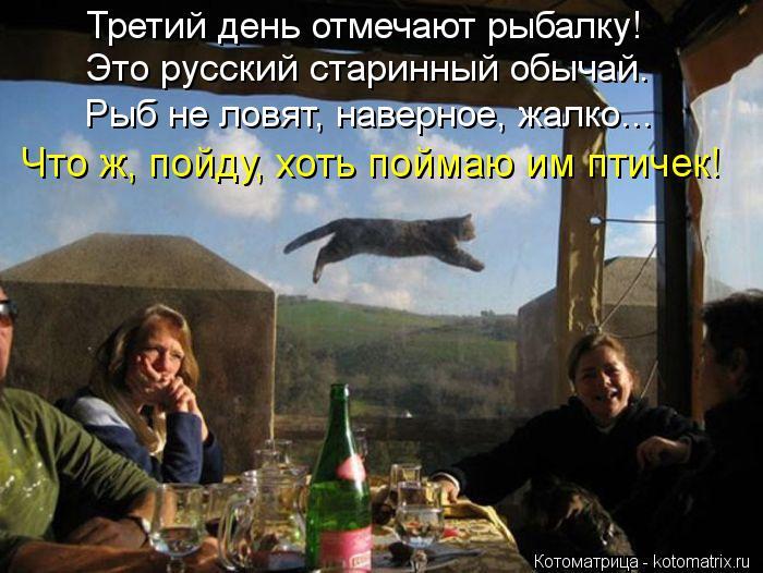 Котоматрица: Третий день отмечают рыбалку! Это русский старинный обычай. Рыб не ловят, наверное, жалко... Что ж, пойду, хоть поймаю им птичек!