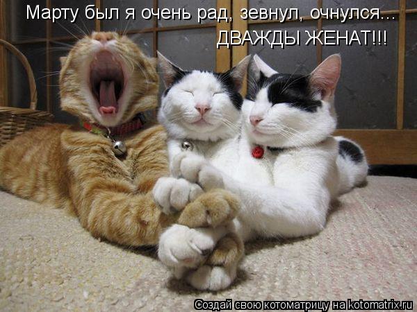 Котоматрица: Марту был я очень рад, зевнул, очнулся... ДВАЖДЫ ЖЕНАТ!!!