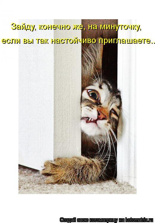 Котоматрица: Зайду, конечно же, на минуточку, если вы так настойчиво приглашаете...