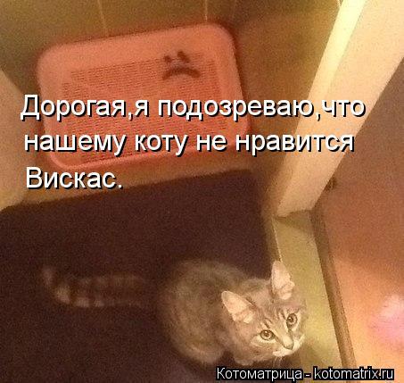 Котоматрица: Дорогая,я подозреваю,что нашему коту не нравится Вискас.