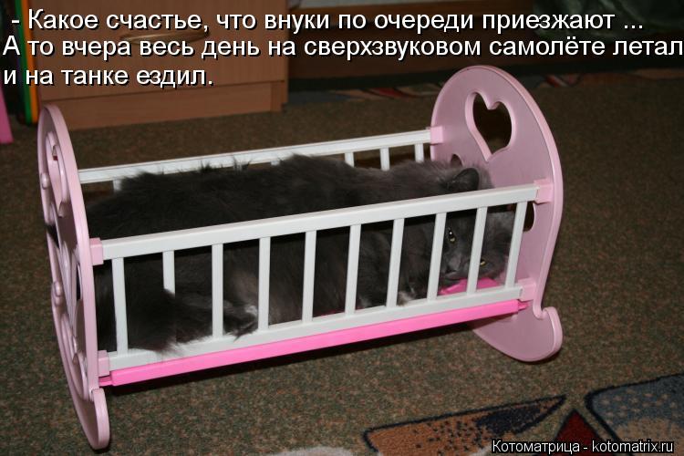 Котоматрица: - Какое счастье, что внуки по очереди приезжают ...  А то вчера весь день на сверхзвуковом самолёте летал и на танке ездил.