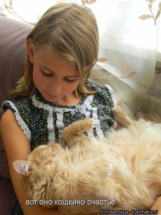Котоматрица: вот оно кошкино счастье