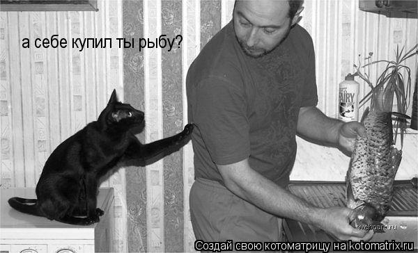 Котоматрица: а себе купил ты рыбу?