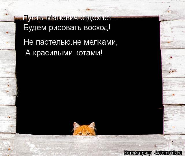 Котоматрица: Пусть Малевич отдохнет... Будем рисовать восход! Не пастелью.не мелками, А красивыми котами!