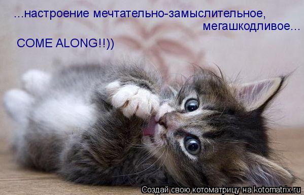 Котоматрица: ...настроение мечтательно-замыслительное, мегашкодливое...           COME ALONG!!))