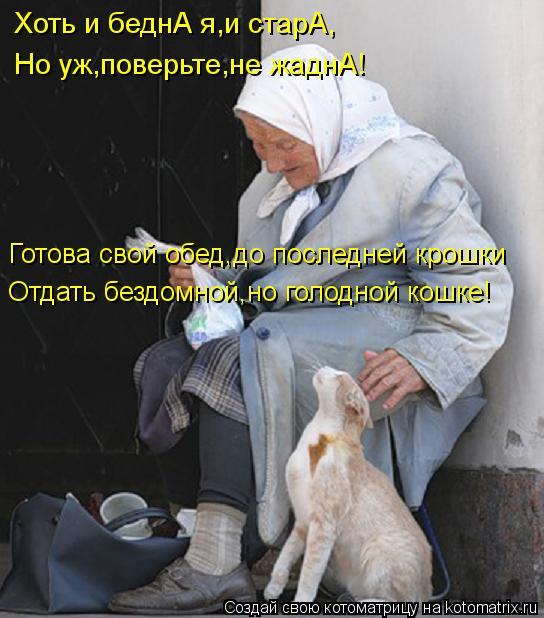 Котоматрица: Хоть и беднА я,и старА, Но уж,поверьте,не жаднА! Готова свой обед,до последней крошки Отдать бездомной,но голодной кошке!